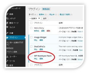 WP Multibyte Patchの確認